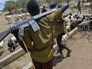 Herdsman Remanded For Allegedly Killing Farmer In Niger