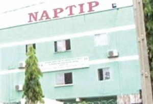 NAPTIP Arrests Suspects Trafficking Ghanaian Girls To Nigeria