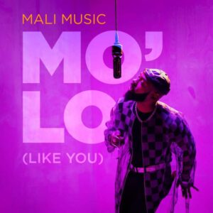 DOWNLOAD Music: Mali Music – Mo'Lo (Like You)