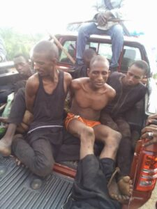 Amotekun, Oodua Peoples Congress, Vigilantes Arrest 6 Bandits In Oyo Forest With 183 Cows, Weapons, Cash